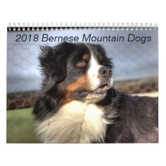 Calendrier 2018 de chien de montagne de Bernese