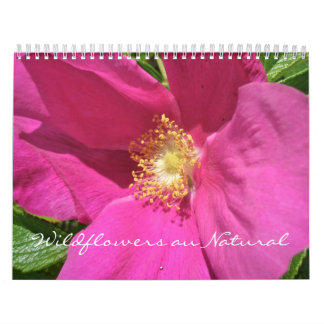 Calendrier - Au de fleurs sauvages naturel