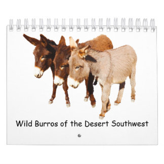 Calendrier Calendrier, faune, burros sauvages, ânes