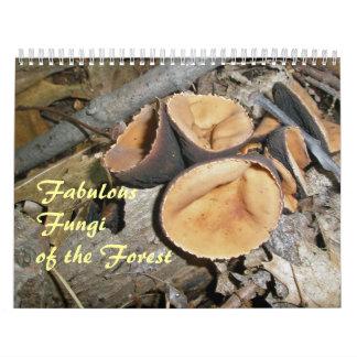 Calendrier - champignons fabuleux de la forêt