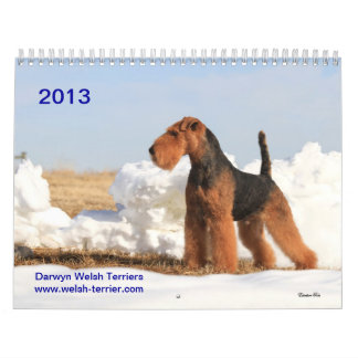 Calendrier de gallois Terrier 2013 par Darwyn