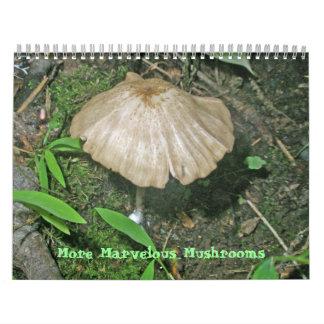 Calendrier - des champignons plus merveilleux
