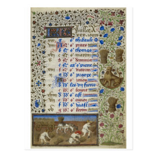 Calendrier médiéval : Juillet Carte Postale