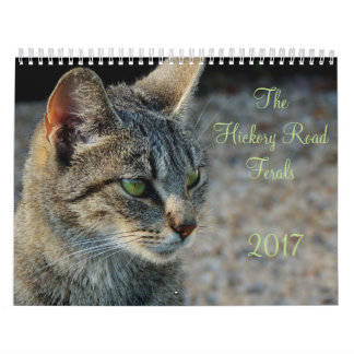Calendrier Mural Hickory Road Ferals 2017 Calendar