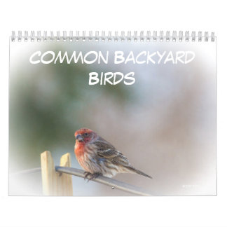 Calendrier - oiseaux communs de jardin