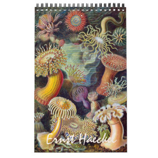 Calendriers Ernest vintage Haeckel, biologie, botanique, la