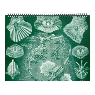 Calendriers Muraux Ernest vintage Haeckel, biologie, botanique, la