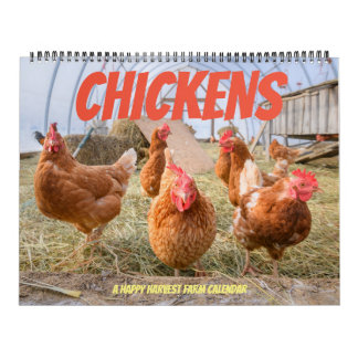 Calendriers Poulet Calendrier-Grand