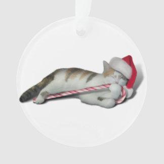 Cali, le sucre de canne Kitty de Noël