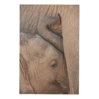 Câlins d'éléphant de bébé impression sur bois