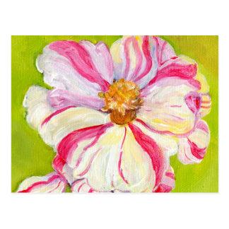 Camélia rose et blanc sur le vert de chaux carte postale