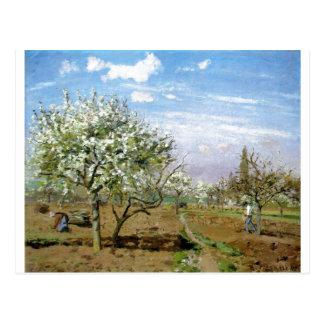 Camille Pissaro - fleurs blanches d'arbres du Carte Postale