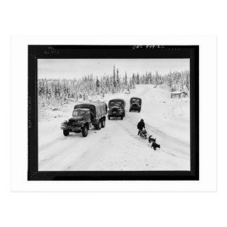 Camions d'Alaska de luge tirée par des chiens et Carte Postale