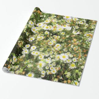 Camomille sauvage - mille de prairie - giftwrap papier cadeau noël