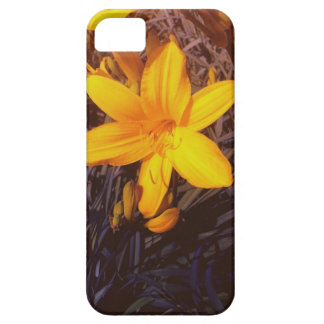 Canadien Lilly - iPhone 5 cas iPhone 5 Case