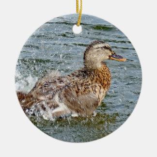 Canard de Mallard jouant dans l'eau Ornement Rond En Céramique