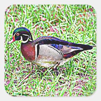 Canard en bois du Mississippi Sticker Carré