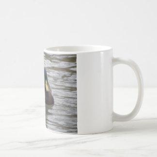 canard tasse à café