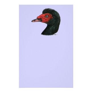 Canard :  Tête de Muscovy Papeterie