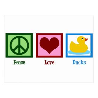 Canards d'amour de paix cartes postales