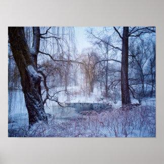 Canards dans un étang congelé dans le Central Park Poster