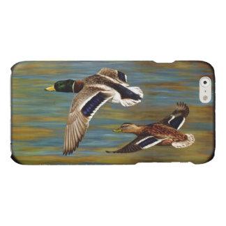 Canards de Mallard volant au-dessus de l'étang