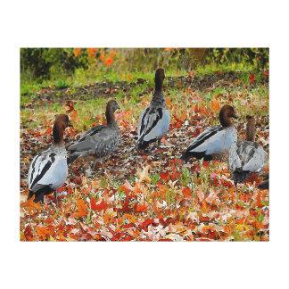 Canards d'impression de toile en automne toiles