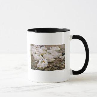 Canards sur un étang mug