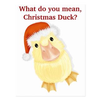 Caneton en carte postale de Noël de casquette de