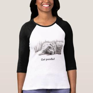 Caniche étendu, obtenu le caniche ? t-shirt