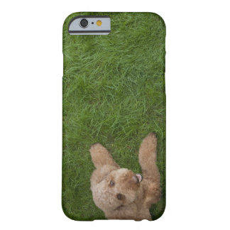 caniche standard 2 coque iPhone 6 barely there