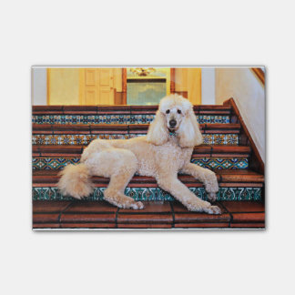 Caniche standard d'abricot - Bocelli Post-it®
