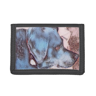 Canicules Labrador noir sur le portefeuille
