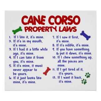 CANNE CORSO PL2 POSTERS