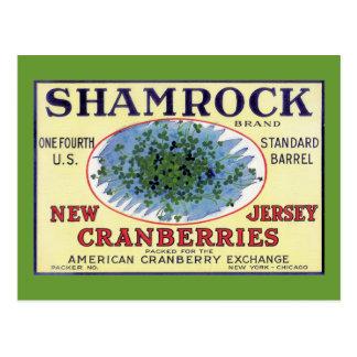 Canneberge irlandaise de New Jersey de shamrock Cartes Postales
