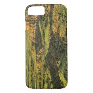Canyon peint après tempête en Theodore Roosevelt Coque iPhone 7