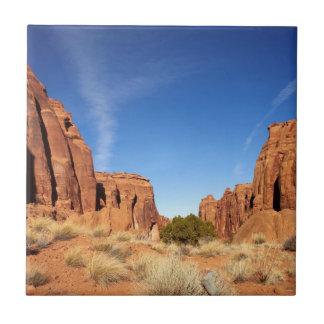 Canyon rouge de roche petit carreau carré