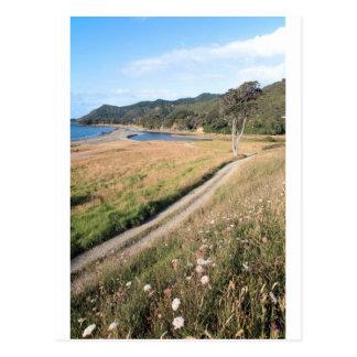Cap est Nouvelle Zélande de pré d'été Carte Postale