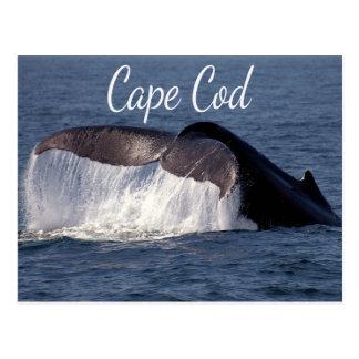 Cape Cod, carte postale de Provincetown le