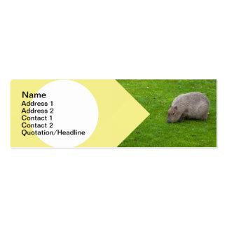 Capybara animal extraordinaire modèle de carte de visite