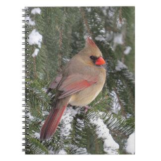 Cardinal Carnet