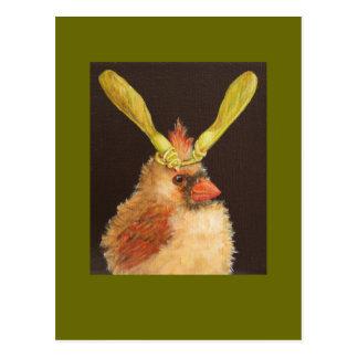 cardinal de bébé avec la carte postale de