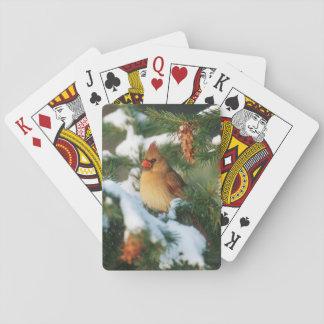 Cardinal du nord dans l'arbre, l'Illinois Cartes À Jouer