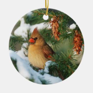 Cardinal du nord dans l'arbre, l'Illinois Ornement Rond En Céramique