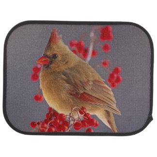 Cardinal du nord féminin parmi l'aubépine tapis de voiture