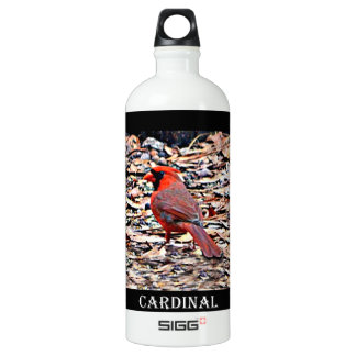 Cardinal (mâle)