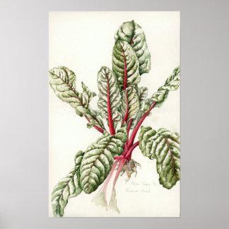 Cardon 1992 de rhubarbe poster