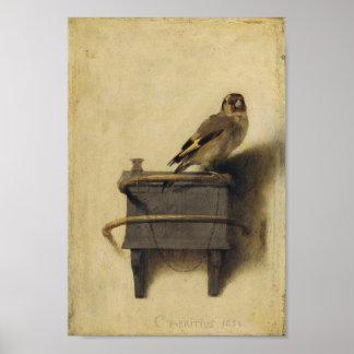 Carel Fabritius le chardonneret Poster