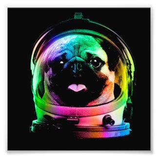 Carlin d'astronaute - carlin de galaxie - l'espace impression photo