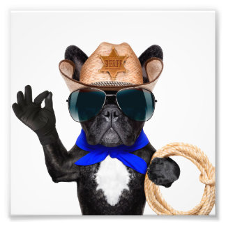 carlin de cowboy - cowboy de chien photo sur toile